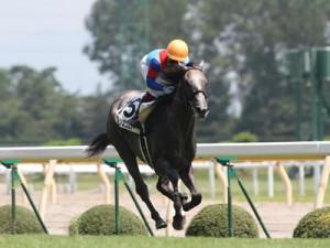 2010-08-08 クリーンエコロジー新馬戦